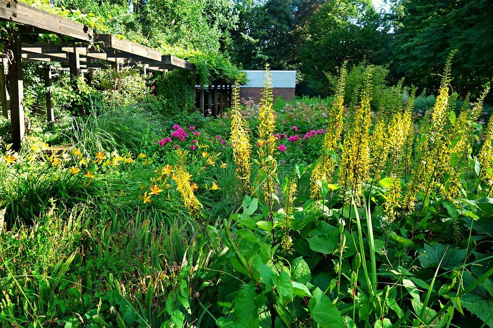 pergola v zahradě